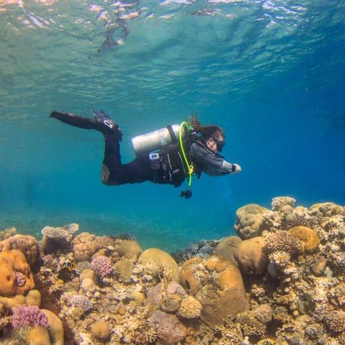H2O Divers Dahab Houereef