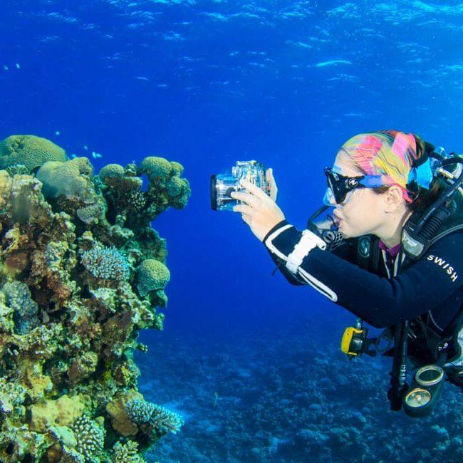 Underwater Photography at Abu Helal, Dahab