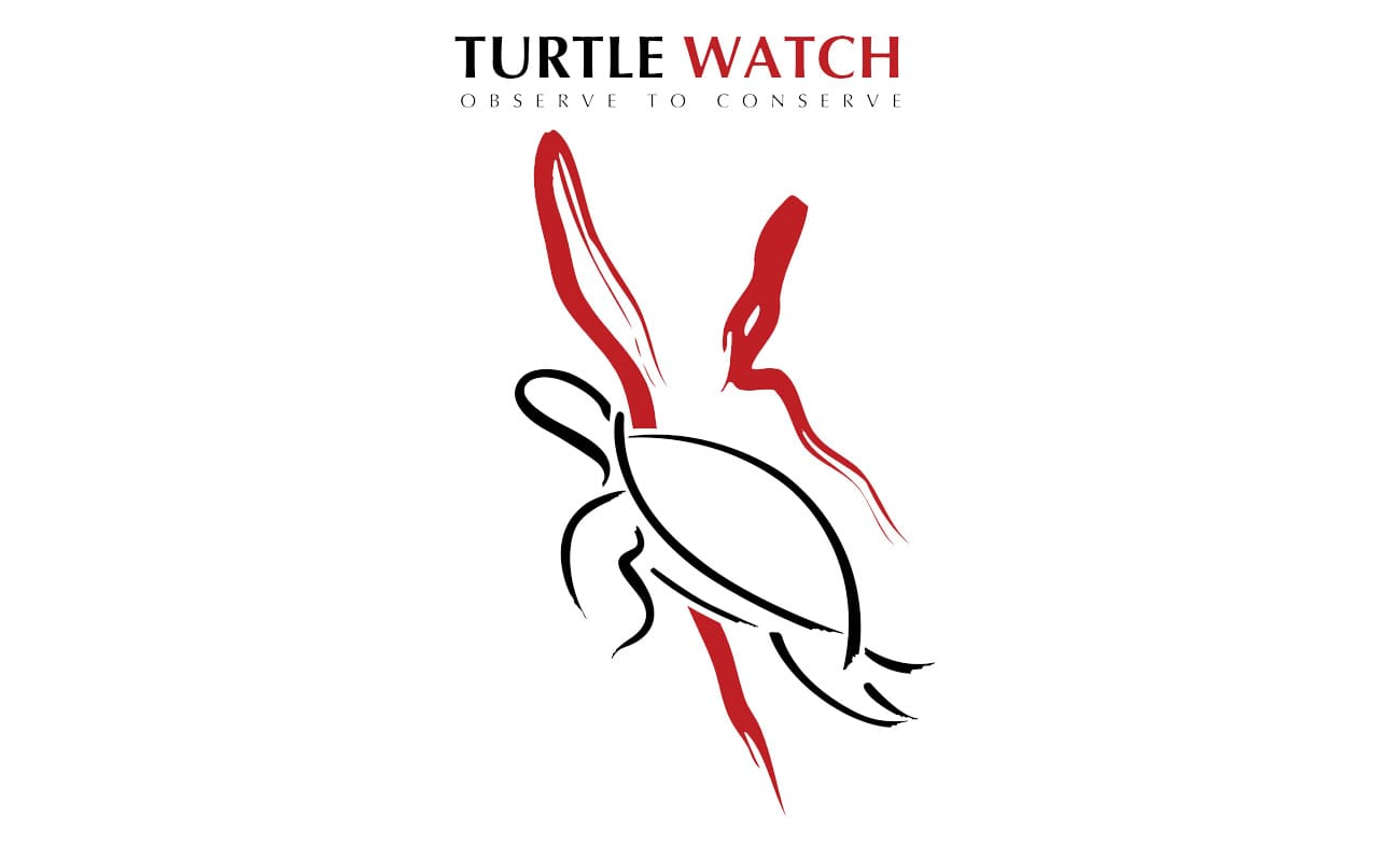 HEPCA Turtle Watch