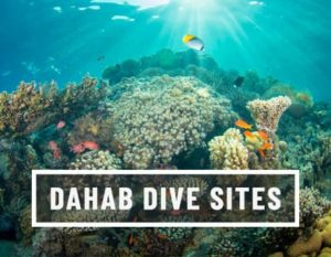 Dahab Dive sites with H2O Divers