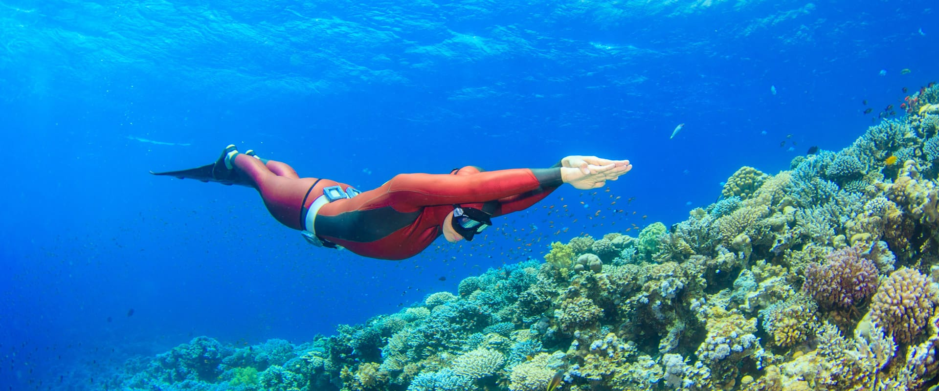 Freediving in Dahab with H2O