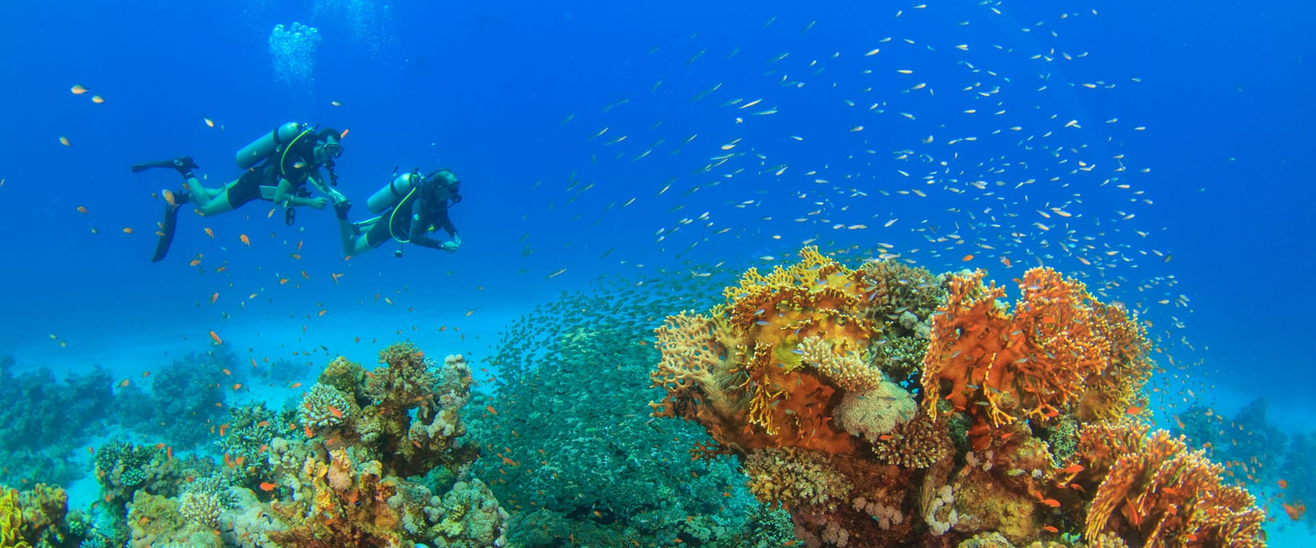 Scuba Diving with H2O Divers Dahab